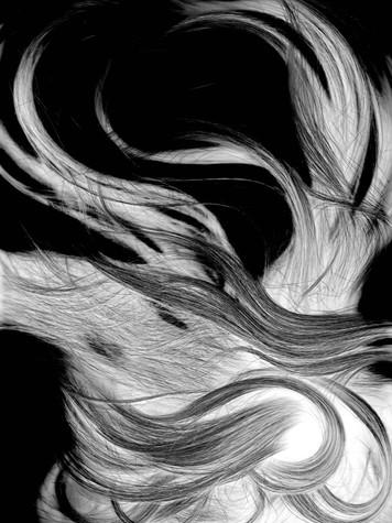 Hair Scan 1 edit 2.jpg