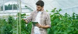 jovens-agricultores-Vida-Rural