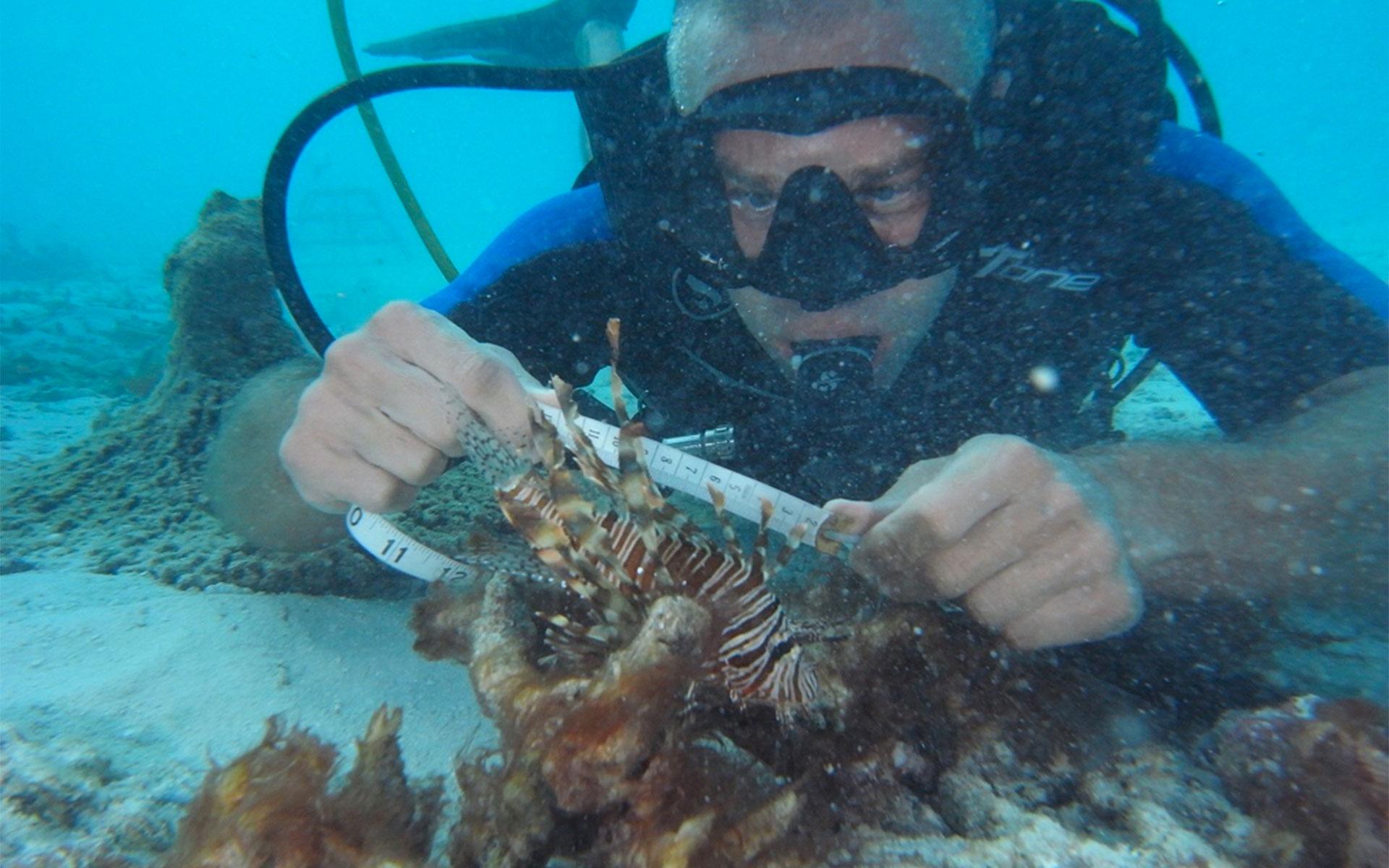 biologo marinho