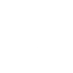 Biomed Logo Watermark 500px.png