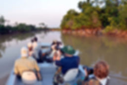 pantanal16-6.jpg