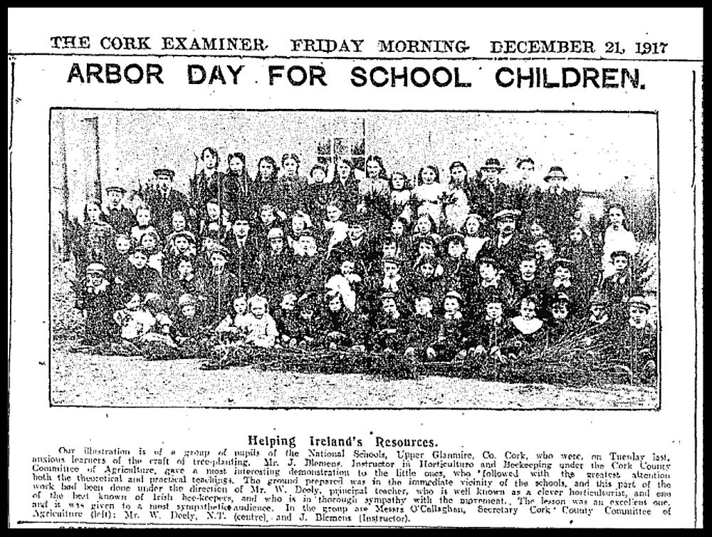 Upper Glanmire National School 1917