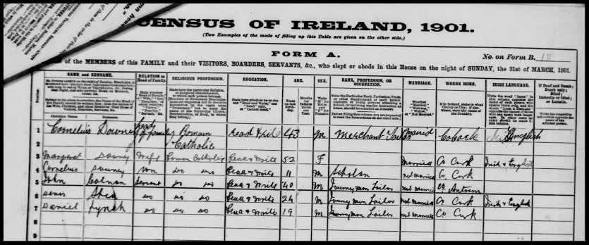1901 census Dan Lynch