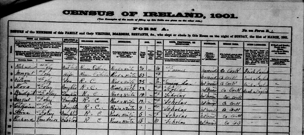 1901 Census - Knockmonlea West, Clonpriest, Cork.