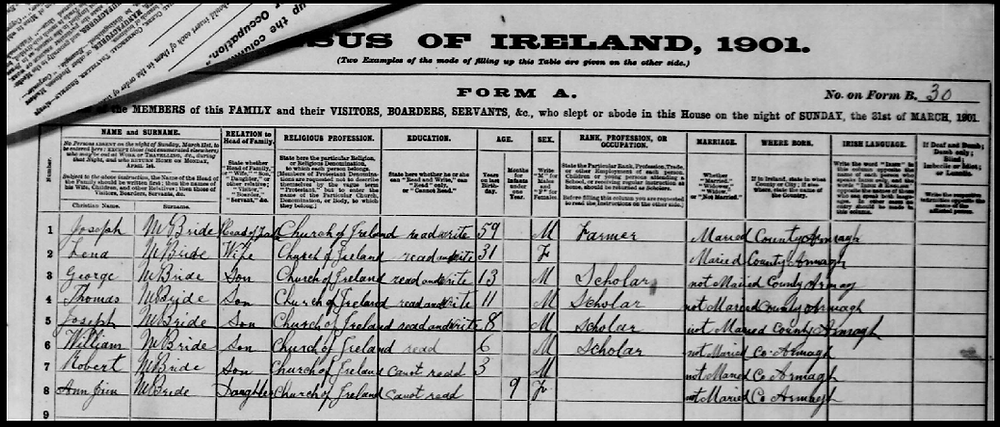 1901 Census McBride Family