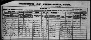 1901 Census - Knockmonlea West, Clonpriest, Cork.