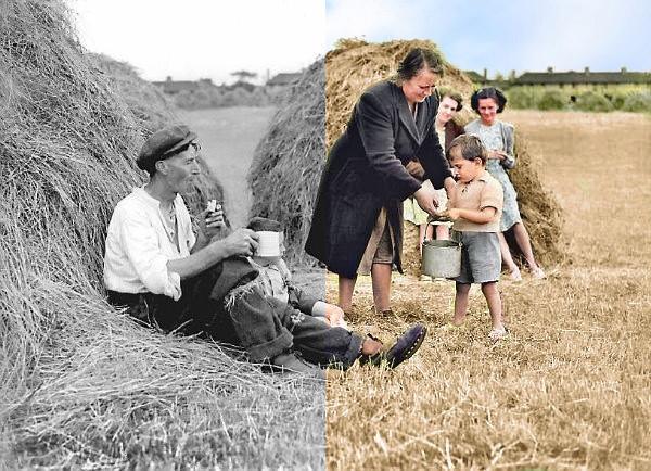 Hay Making 1947