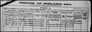 1901 Census, Lynch family, Trawlebane, West Cork