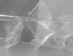 The White Frame2.jpg