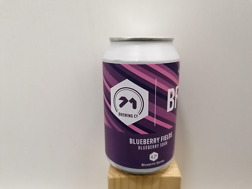 Blueberry Fields - Sour Fruited
