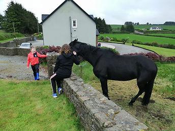 Daria, Igor & Horse.jpg