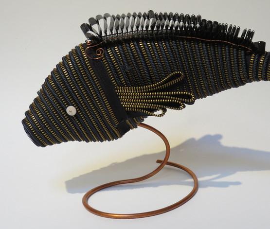 Zipper Fish
