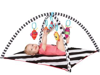 Sassy  Developmental Playmat