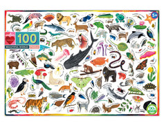 eeBoo Beautiful World 100-piece Puzzle