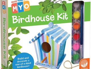 Mindware Make Your Own Birdhouse