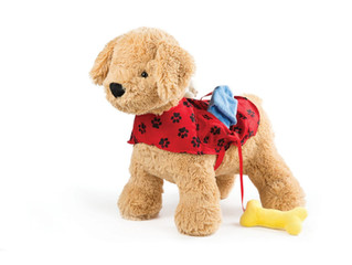 North American Bear Puppy Activity Toy