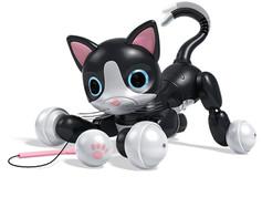 Zoomer Kitty, Midnight