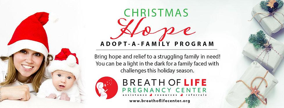 Website HeaderAdoptafamily2020 mom and b