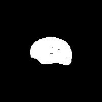 brain_logo