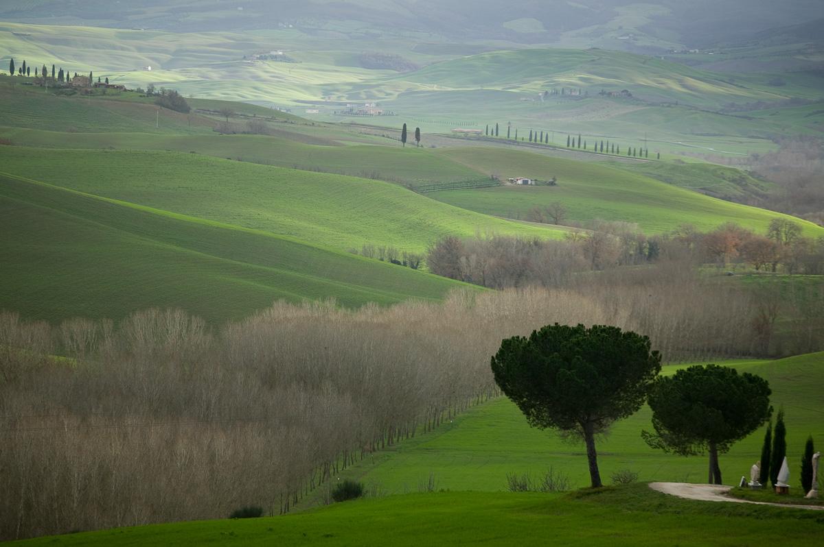 vicinity of Pienza