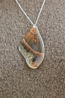 Serpent Moth Necklace