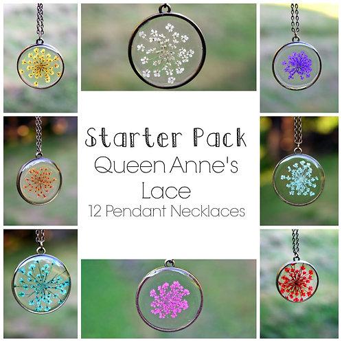12 Queen Anne Starter Pack- Aged Bronze