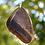 Thumbnail: Owl Face Moth Forewing