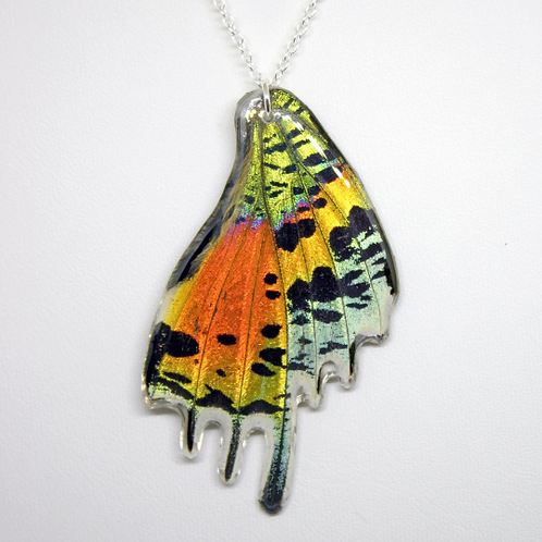 Sunset Moth Hind Wing Necklace