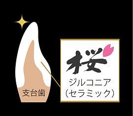 sakura構成.jpg