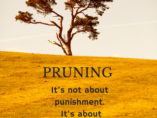 Pruned for Purpose