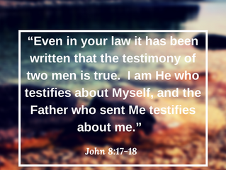 What Does God Say About You?