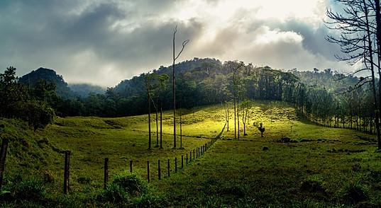 Costa Rican Rain Showers