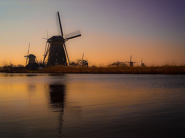 Kinderdijk Morning