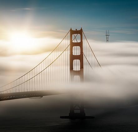 Morning Fog Flow