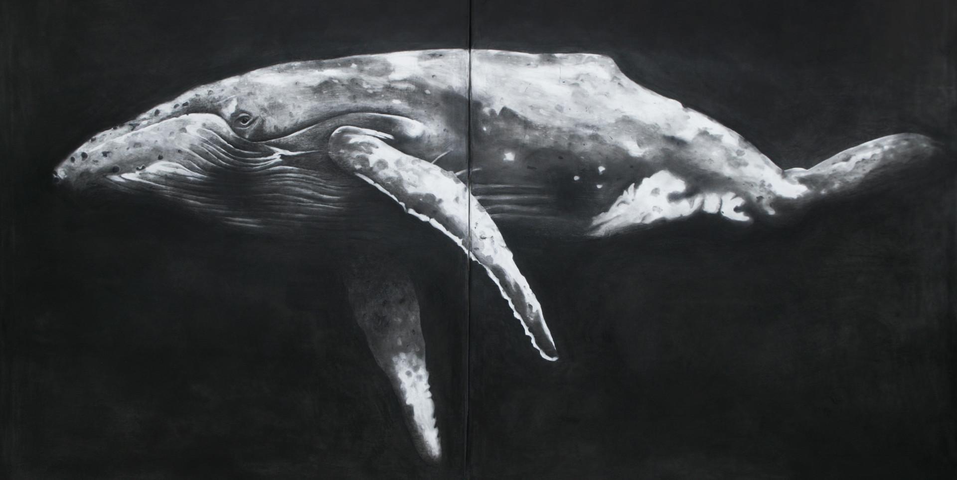 poor whale_wix.jpg