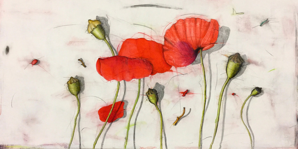large poppies_wix.jpg