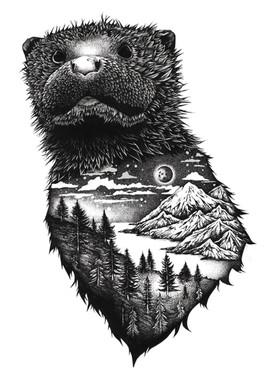 Otter Drawingfor sophie.jpg