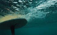 surfer_paddling_toward_the_breaking_wave