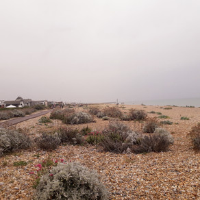 Lancing Beach by Foy Timms