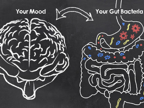 HOW DOES YOUR GUT HEALTH AFFECT YOUR MENTAL HEALTH?