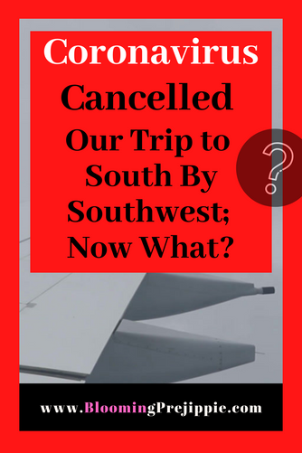 Coronavirus Cancelled Our Trip to South By Southwest; Now What?