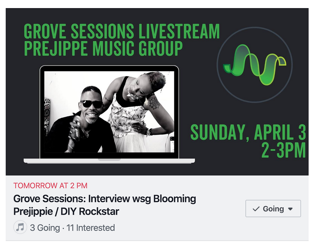 Grove Studios Livestream Interview --Blooming Prejippie