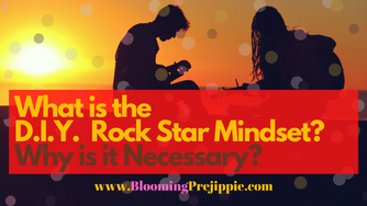 What is the D.I.Y. Rock Star Mindset? Why is it Necessary?
