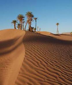 Desert_Its4youtours_agadir_.jpg