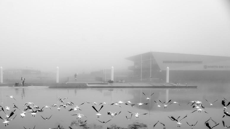 Fog0719-123.jpg