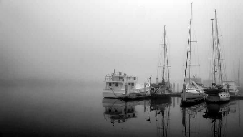 Fog0719-117.jpg