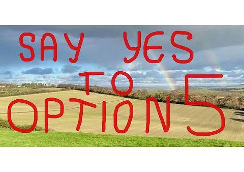 Option5.jpg