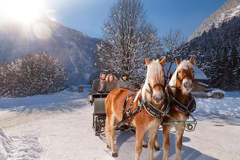 Romantische Pferdeschlittenfahrt im Bluntautal