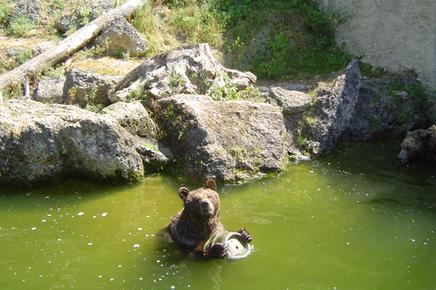 Zoo Hellbrunn Salzburg