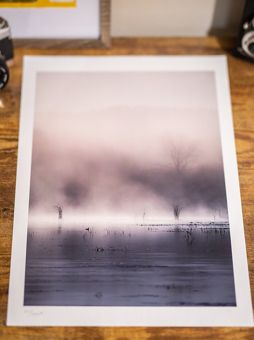 "13x19"" Print of Grebe on a River of Silver"